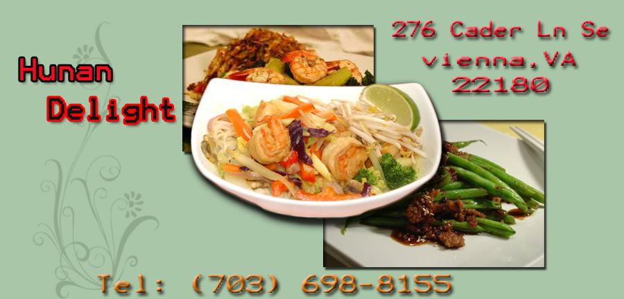 Best Chinese Food In Vienna Va