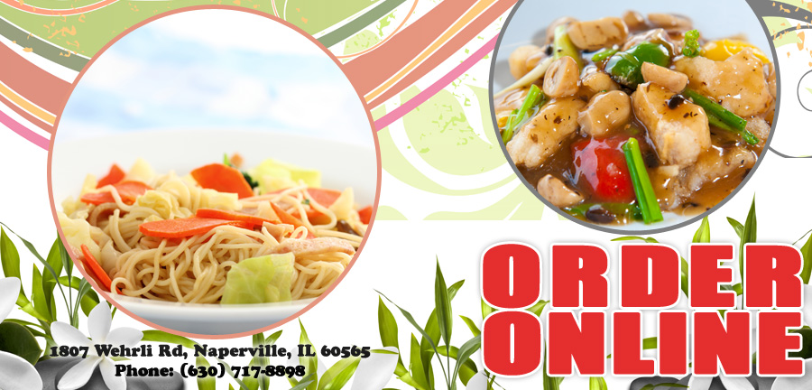 New Wok | Order Online | Naperville, IL 60565 | Chinese