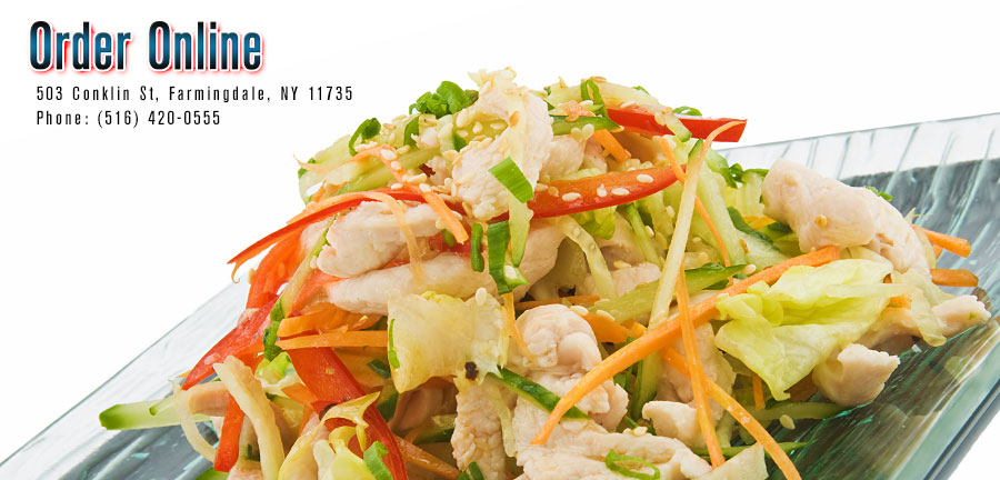 Great Wall Chinese Food Menu Farmingdale
