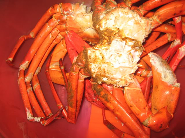 Red Crab image